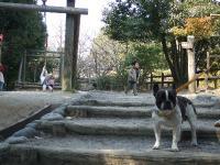 2008_0311佐世保バーガー0011