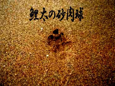 海大将鯉1