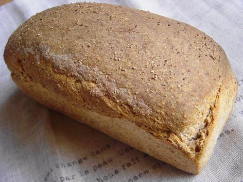 20090123ライ麦パン焼き上がりパウンド