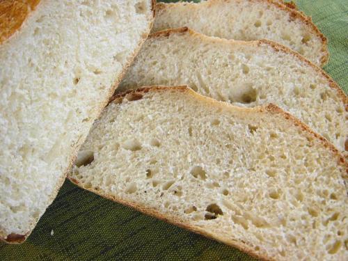 20090602レーズン酵母でライ麦カンパーニュ断面