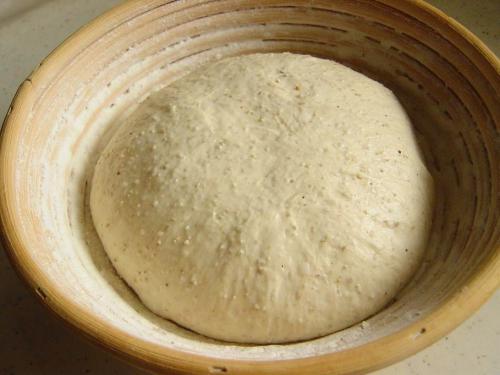 20090603レーズン酵母でライ麦入りカンパーニュ仕上げ発酵済