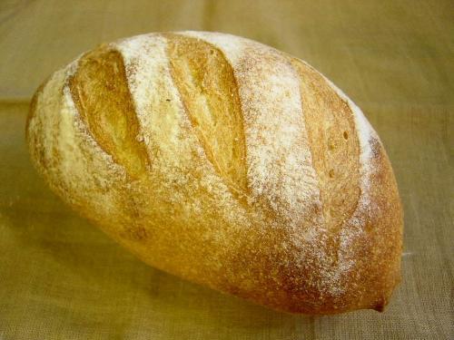 20090705ジンジャエール酵母でプレーンなパン