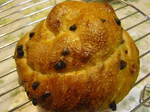 20090724ジンジャエール酵母でチョコチップパン