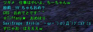 107_20090112061012.jpg