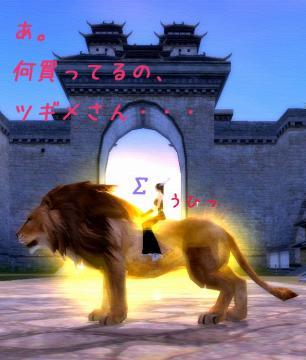 121_20081204193317.jpg