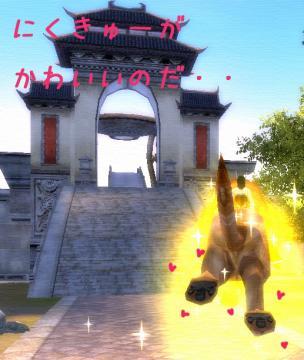 122_20081204193324.jpg