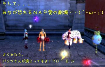 139_20090113204141.jpg