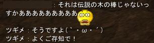 183_20090128184751.jpg