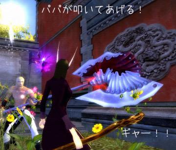213_20090202190859.jpg