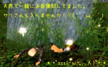 226_20090203200112.jpg
