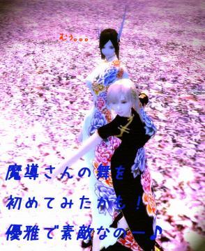 25_20081218011111.jpg