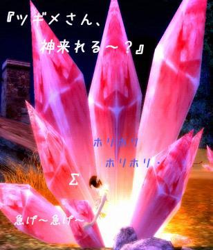 36_20081116153240.jpg