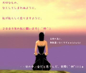 37_20081230233055.jpg