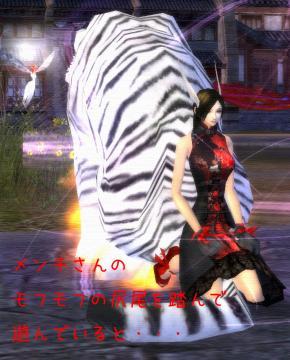 390_20090225210444.jpg