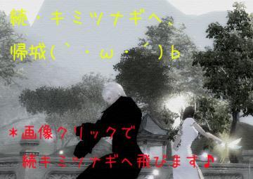 416_20090306205341.jpg