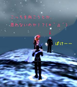 62_20090105221722.jpg