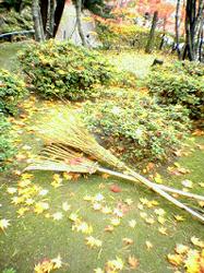 木村美術館 庭掃除の途中?それとも演出?