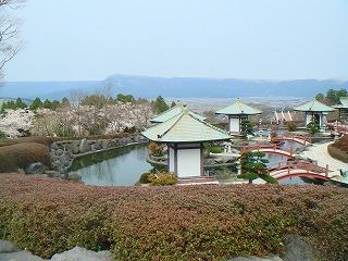 komugi 1651