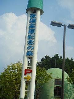 komugi 2429