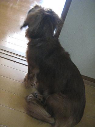 2008662.jpg