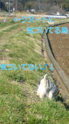 20080401092106.jpg