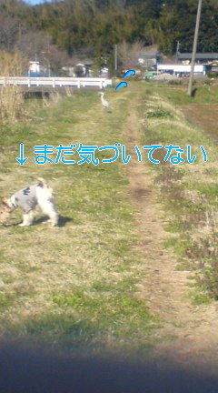 20080401092108.jpg