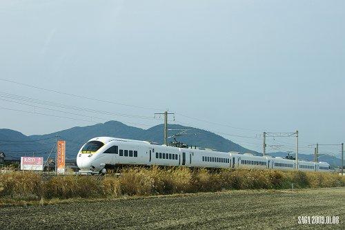 IMGP4339-s.jpg