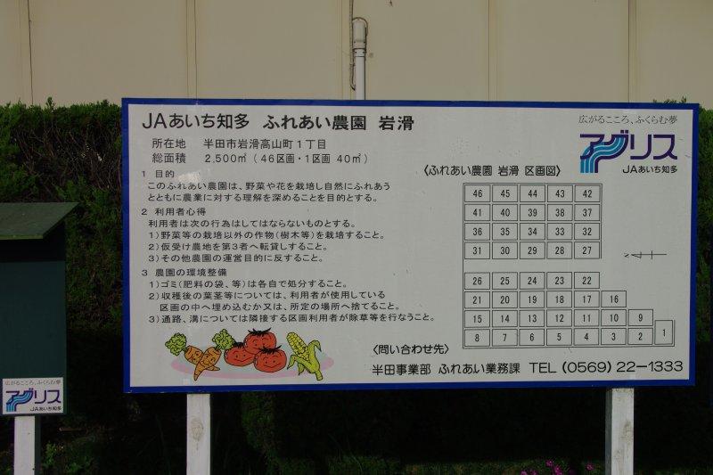 IMGP6062-y.jpg