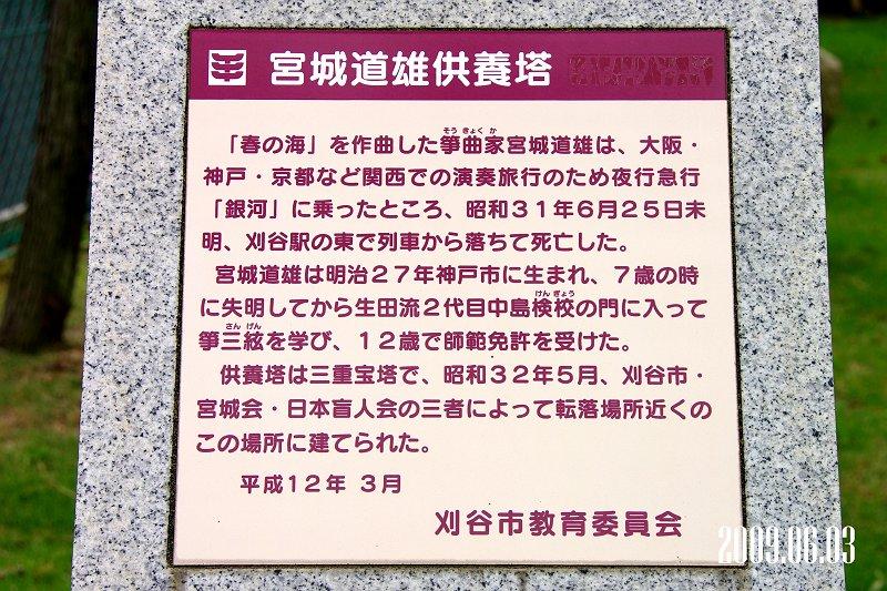 IMGP6356-y.jpg