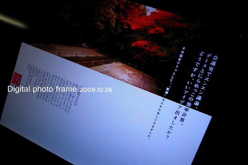 R80010667.jpg