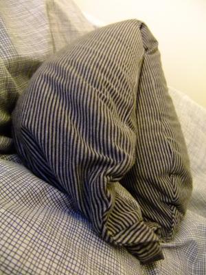 pillow_convert_20111005103632.jpg