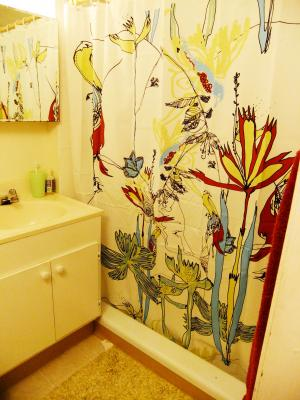 shower+curtain_convert_20111228145142.jpg