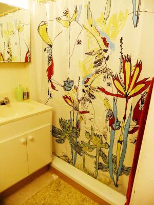 shower+curtain_convert_20111228145142.jpg