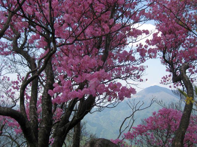 isidouyama146.jpg