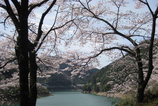 itifusa061.jpg