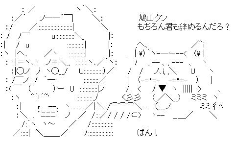 鳩山 アライグマ