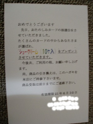 z-P1010005-1.jpg