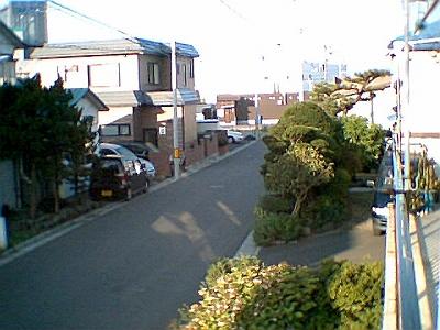 z-photo020.jpg