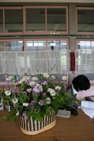 【虹文庫】文庫の花