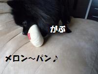 1017-10_convert_20081017124853.jpg