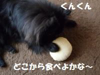 1017-11_convert_20081017124923.jpg