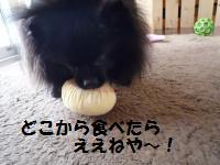 1017-15_convert_20081017125128.jpg
