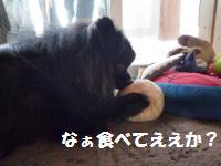 1017-16_convert_20081017125159.jpg