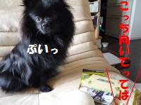 1017-8_convert_20081017124751.jpg
