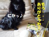1017-9_convert_20081017124823.jpg