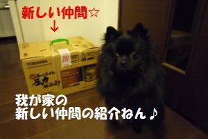 1019-12_convert_20081020204347.jpg