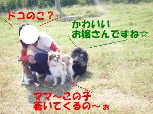 1019-2_convert_20081020203537.jpg