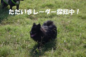 1019-9_convert_20081020204246.jpg