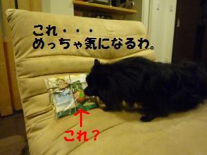 1021-3_convert_20081021231425.jpg