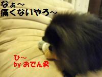 1022-13_convert_20081023080123.jpg
